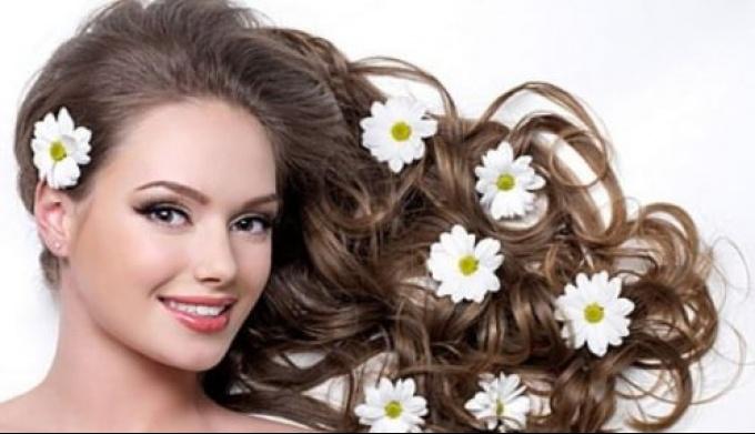 Как подлечить волосы травяными отварами