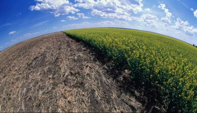 Деградация почв