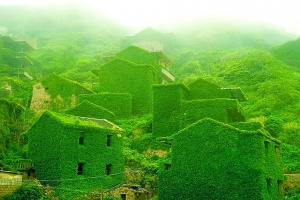 Abandoned-village-zhoushan-china-100.jpg